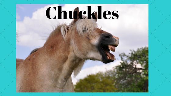 Chuckles-4